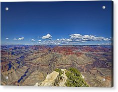 The Grand Canyon--another Look Acrylic Print by Angela A Stanton