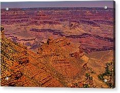 The Grand Canyon Iv Acrylic Print by David Patterson
