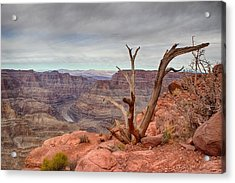 The Grand Canyon Acrylic Print by Michael Rogers