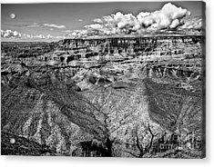 The Grand Canyon Acrylic Print by Bob and Nadine Johnston