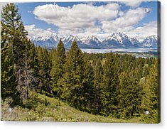 The Grand Tetons From Signal Mountain - Grand Teton National Park Wyoming Acrylic Print by Brian Harig