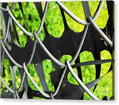 The Grass Is Always Greener On The Other Side - Abstract Acrylic Print