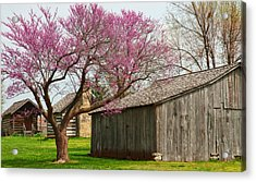 The Gray Campbell Farmstead Acrylic Print by Lena Wilhite