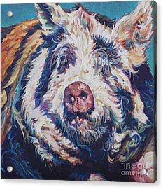 The Great Barrington Acrylic Print