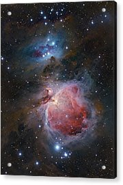 The Great Orion Nebula Acrylic Print by Alex Conu