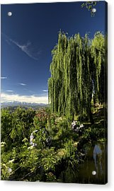 The Green And The Hills Acrylic Print by Rajiv Chopra