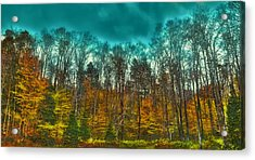 The Green Bridge Road In Autumn Acrylic Print by David Patterson