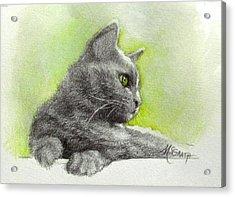 The Green Eye Acrylic Print by Janet McGrath
