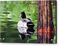 The Green Mirror Acrylic Print