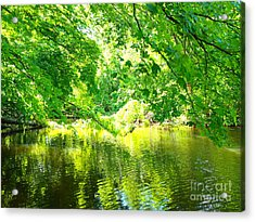 The Green Mirrored Cove Acrylic Print by Deborah Fay