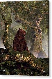 The Grizzly's Forest Acrylic Print by Daniel Eskridge