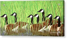 The Group Of Seven Acrylic Print