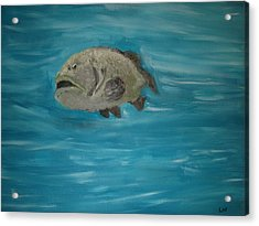The Grouper Acrylic Print by Lee Farley