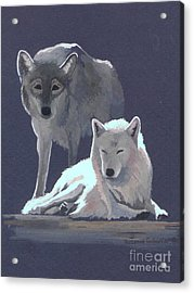 The Guardian Acrylic Print by Suzanne Schaefer