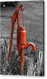 The Hand Pump Acrylic Print by Barbara McMahon