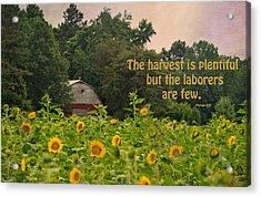The Harvest Is Plentiful Acrylic Print by Sandi OReilly