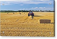 Acrylic Print featuring the photograph The Harvest by Keith Armstrong
