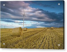 The Harvest Acrylic Print