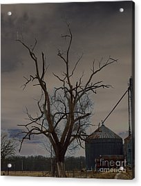 The Haunting Tree Acrylic Print