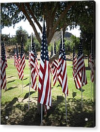 The Healing Field Acrylic Print