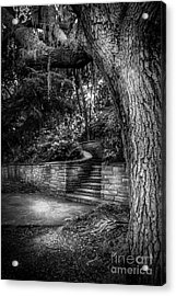 The Hidden Steps 1 Acrylic Print by Marvin Spates