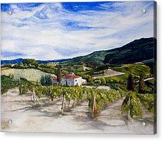 The Hills Of Tuscany Acrylic Print by Monika Degan