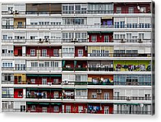The Hive Acrylic Print by Alfonso Novillo