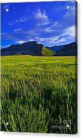 The Hogbacks Acrylic Print