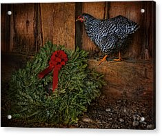 The Holiday Hen Acrylic Print by Robin-Lee Vieira