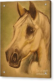 Acrylic Print featuring the painting The Horse by Sorin Apostolescu