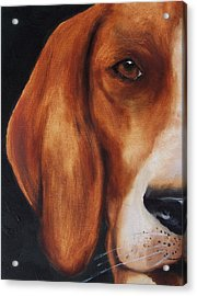 The Hound Acrylic Print