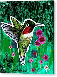 The Hummingbird Acrylic Print by Genevieve Esson