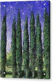 The Hushed Poetry Of Trees In The Night Acrylic Print by Wendy J St Christopher