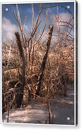 The Ice Will Cometh Again Acrylic Print