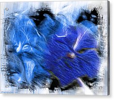 The Images Within Acrylic Print
