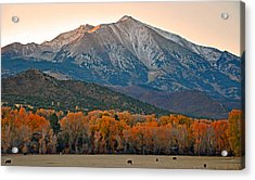 The Impressive Mount Sopris   Acrylic Print by Eric Rundle