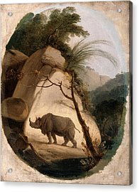 The Indian Rhinoceros, Thomas Daniell, 1749-1840 Acrylic Print by Litz Collection