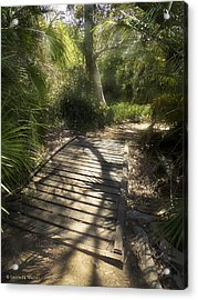 Acrylic Print featuring the photograph The Journey Along The Path Comes With Light And Shadows by Lucinda Walter