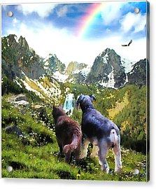The Journey Acrylic Print by Tom Schmidt