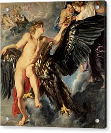The Kidnapping Of Ganymede Acrylic Print by Rubens