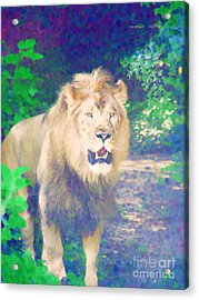 Acrylic Print featuring the photograph The King by Diane Miller