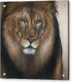 The King Grows Weary  Acrylic Print by Pat Erickson