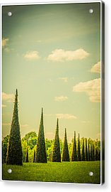 The Knot Garden's Triangular Landscaping Acrylic Print