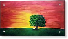 The Knowing Tree Acrylic Print by Valorie Cross