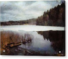 The Lake In My Little Village Acrylic Print by Gun Legler