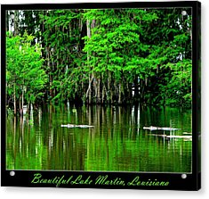 The Lake Martin Habitat Acrylic Print