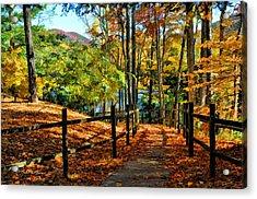 The Lake Path Acrylic Print by Kenny Francis