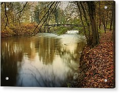 The Lambro River Acrylic Print by Alfio Finocchiaro