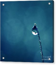 The Lamp Post Acrylic Print by Aimelle