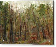 The Land Between II Acrylic Print
